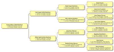 Släktled använder släktträd för att presentera släktforskning.